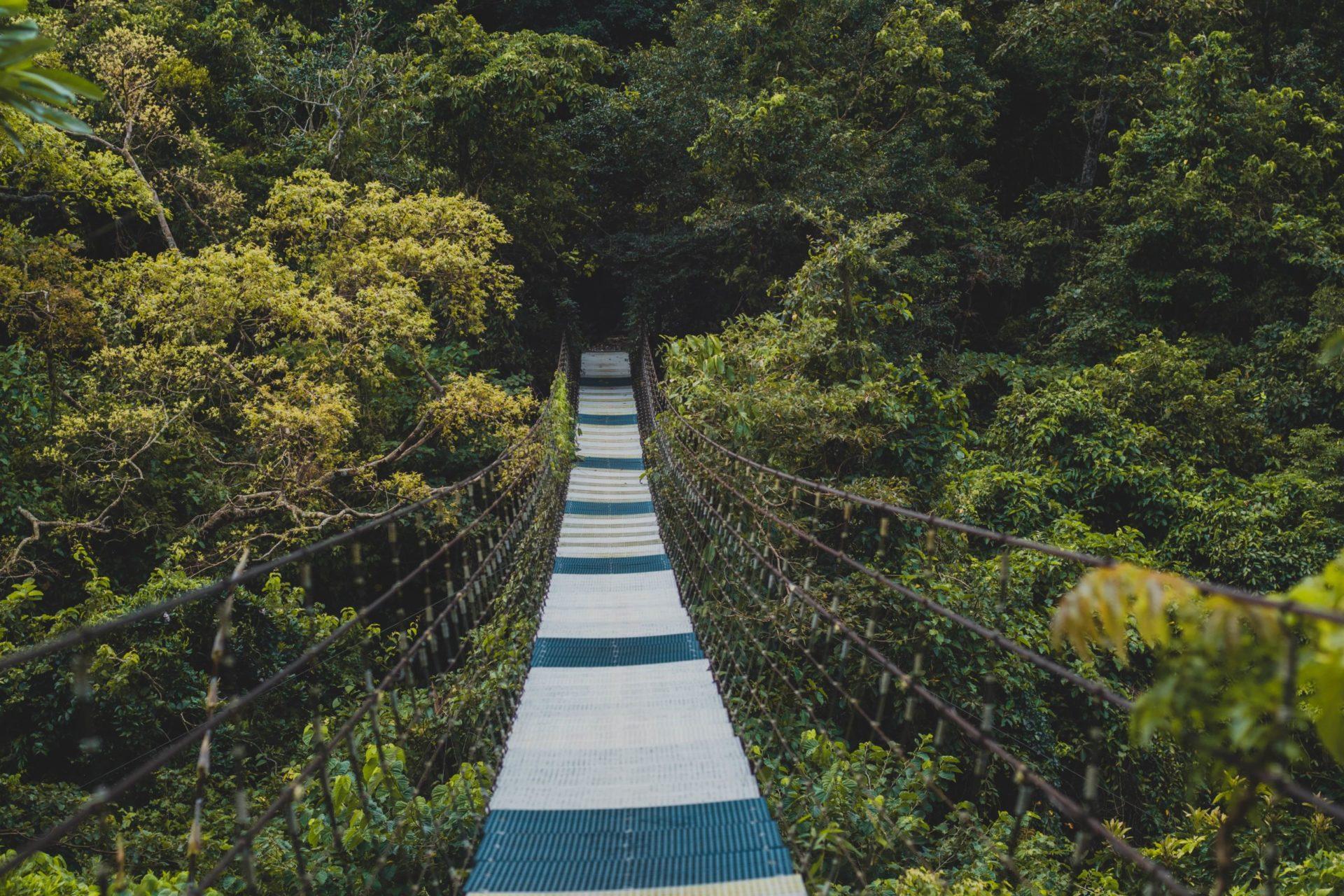 Protéger l'environnement et la biodiversité